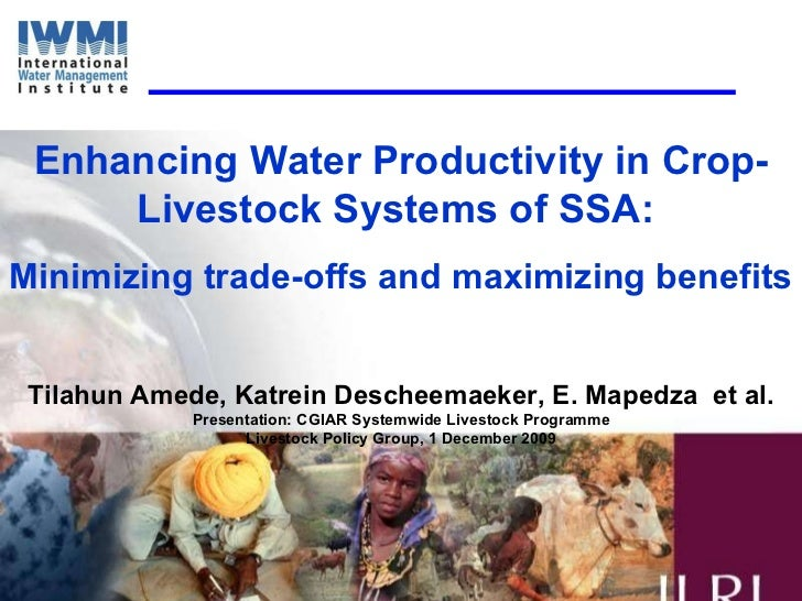 Enhancing Water Productivity in Crop-Livestock Systems of SSA:  Minimizing trade-offs and maximizing benefits Tilahun Amed...