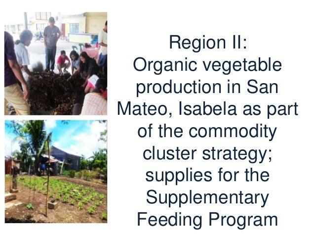 Region II: Cassava production