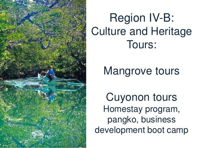 Region IV-B: Taytay, Palawan cashew processing