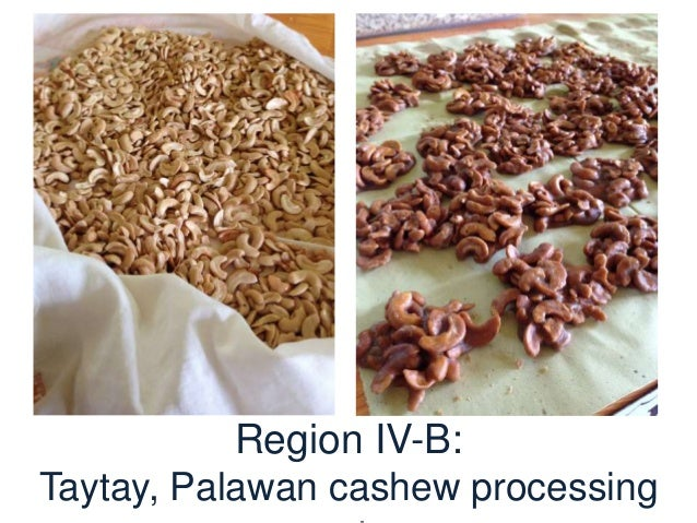 Region VII: Dairy farmers, also SLP participants in Ubay, Bohol are organized into cooperatives for the production of vari...