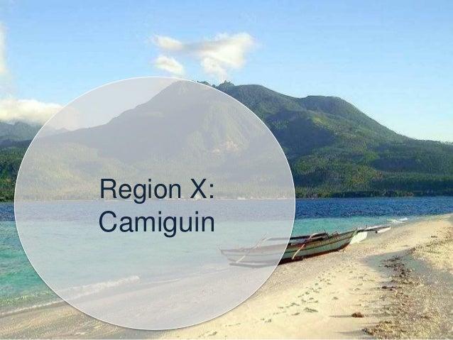 Regions CAR, III, V, VI, XI: Vegetable production in partnership with SM Foundation, Inc. for the Kabalikat sa Kabuhayan F...