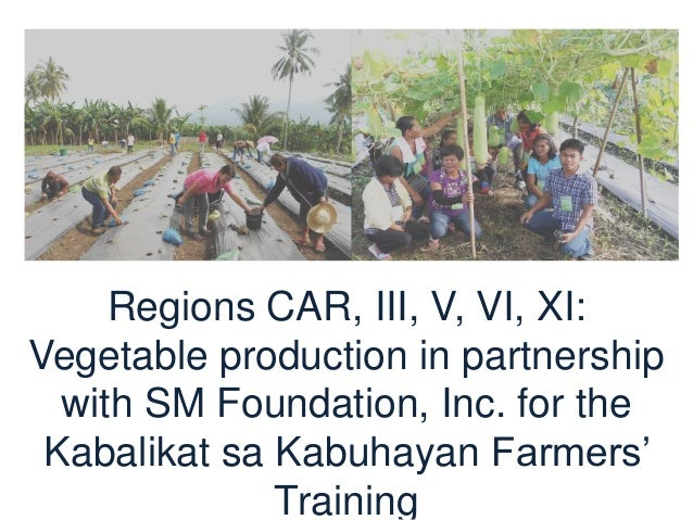 Regions CAR, III, V, VI, XI: Today, there are farmers who now supply vegetables to Day Care Centers for the Supplementary ...