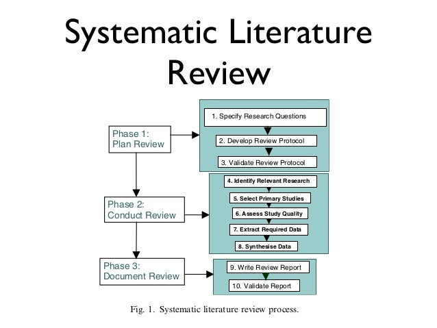 How to write a systematic review of reasons