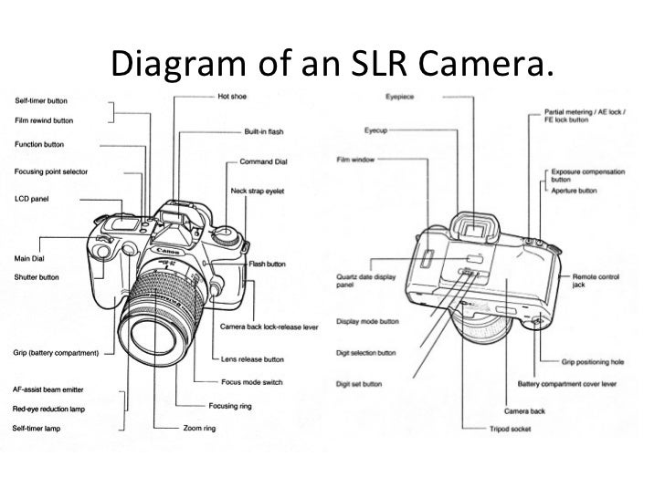 Digital Slr Cameras Schematic Digital Waterproof Camera