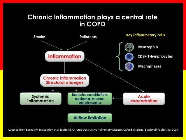 study on the management of chronic asthma Epidemiology of copd and asthma the global initiative for chronic obstructive lung  to one study, asthma costs the united states $  copd and asthma management in.