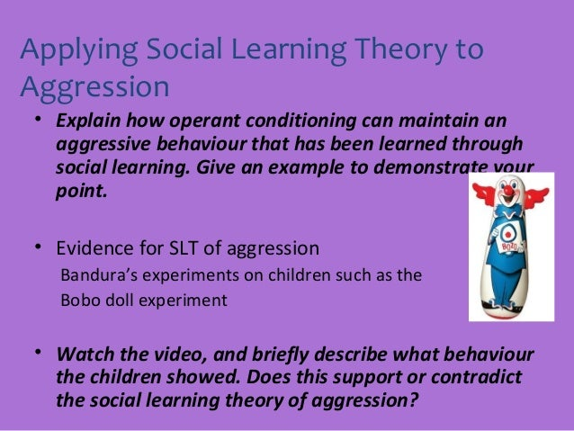 Social psychological theories of aggression essay examples