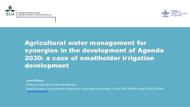 Agricultural water management for synergies in the development of Agenda 2030: a case of smallholder irrigation developmen...