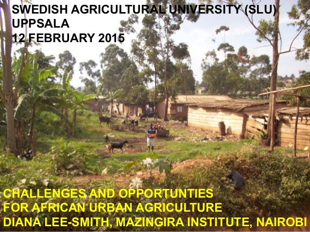 SWEDISH AGRICULTURAL UNIVERSITY (SLU) UPPSALA 12 FEBRUARY 2015 CHALLENGES AND OPPORTUNTIES FOR AFRICAN URBAN AGRICULTURE D...