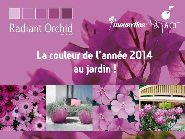 Radiant Orchid par Pantone  ®  La couleur de l'année 2014 au jardin !  ©Elho