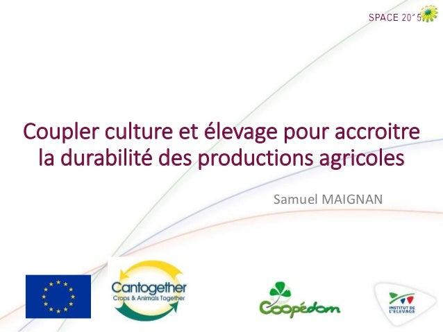 Coupler culture et élevage pour accroitre la durabilité des productions agricoles Samuel MAIGNAN