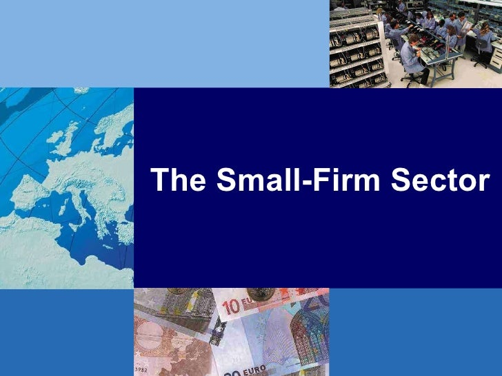The Small-Firm Sector