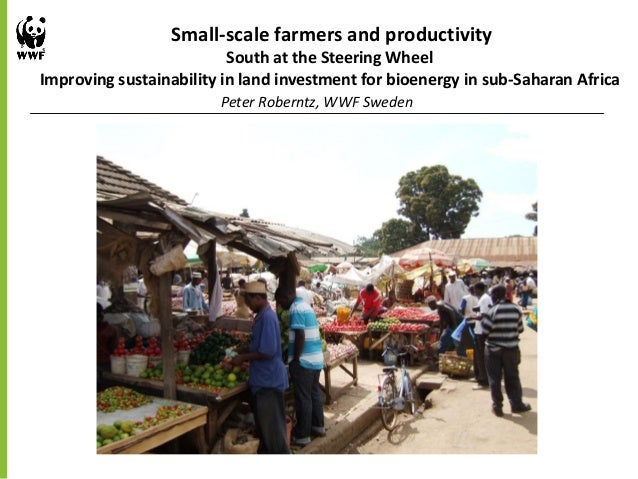 Small-scale farmers and productivitySouth at the Steering WheelImproving sustainability in land investment for bioenergy i...