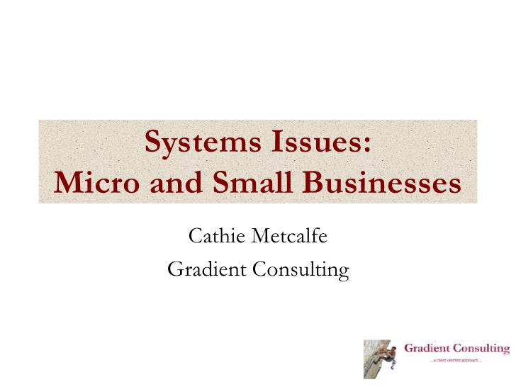 Systems Issues:Micro and Small Businesses<br />Cathie Metcalfe<br />Gradient Consulting<br />