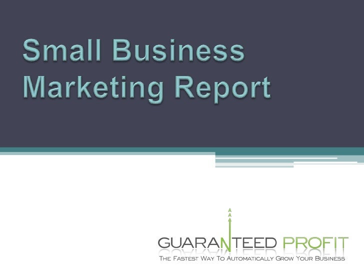 Small Business Marketing Report<br />