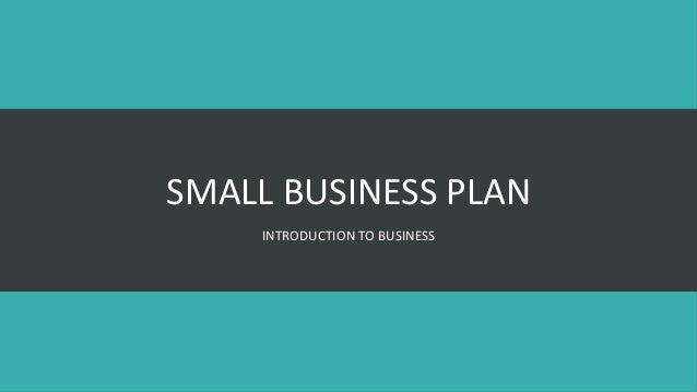 SMALL BUSINESS PLAN INTRODUCTION TO BUSINESS