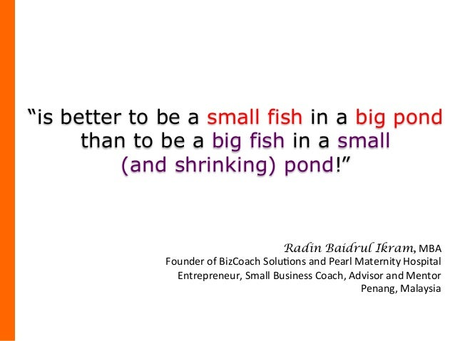 Small fish conquering the big pond for Big fish in a small pond