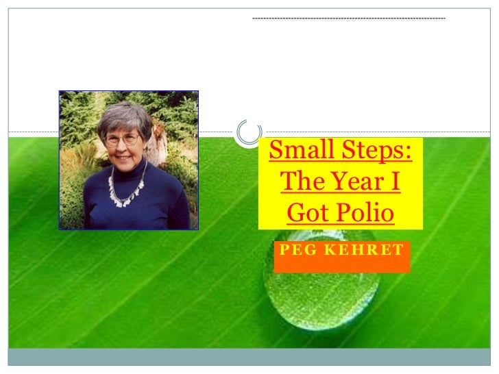Small Steps: The Year I Got Polio<br />Peg Kehret<br />