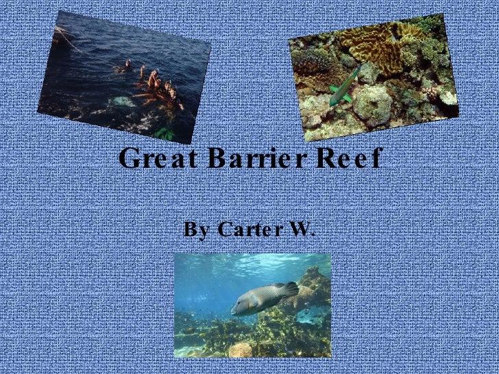 Great Barrier Reef By Carter W.