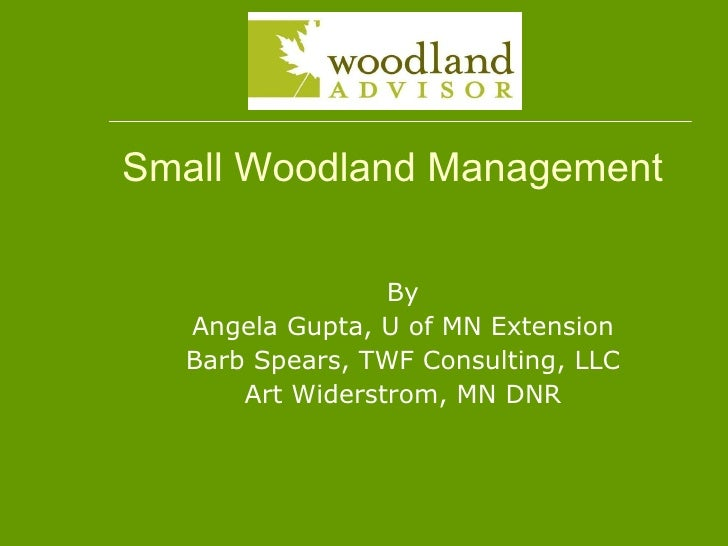 Small Woodland Management By Angela Gupta, U of MN Extension Barb Spears, TWF Consulting, LLC Art Widerstrom, MN DNR