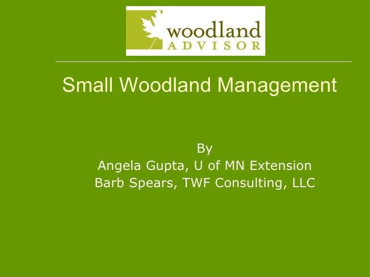 Small Woodland Management By Angela Gupta, U of MN Extension Barb Spears, TWF Consulting, LLC