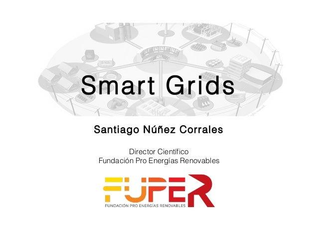 Smart Grids Santiago Núñez Corrales Director Científico Fundación Pro Energías Renovables
