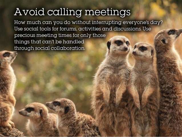 Avoid calling meetings How much can you do without interrupting everyone's day? Use social tools for forums, activities an...