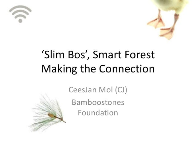 'Slim Bos', Smart ForestMaking the Connection     CeesJan Mol (CJ)      Bamboostones       Foundation