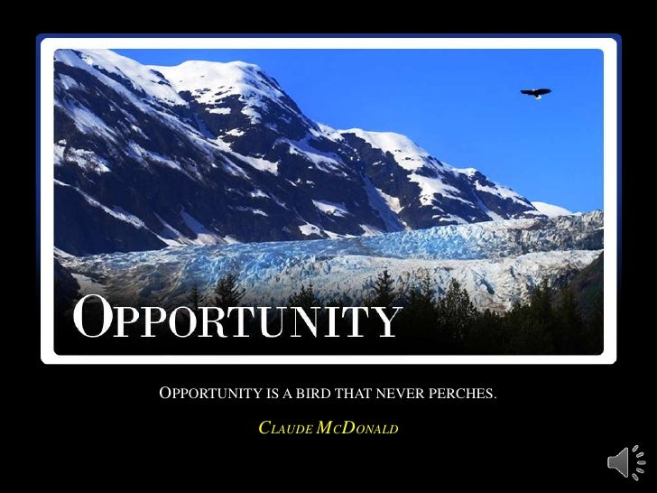 OPPORTUNITY IS A BIRD THAT NEVER PERCHES.           CLAUDE MCDONALD