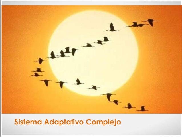 Sistema Adaptativo Complejo