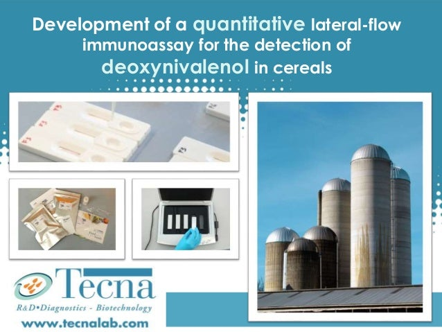 Development of a quantitative lateral-flow immunoassay for the detection of deoxynivalenol in cereals