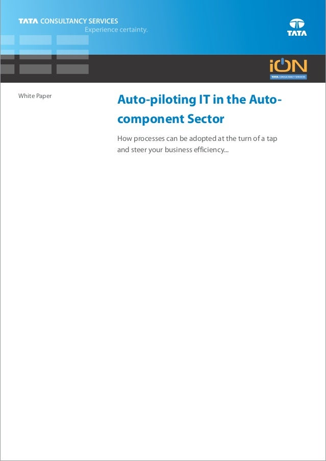 White Paper              Auto-piloting IT in the Auto-              component Sector              How processes can be ado...