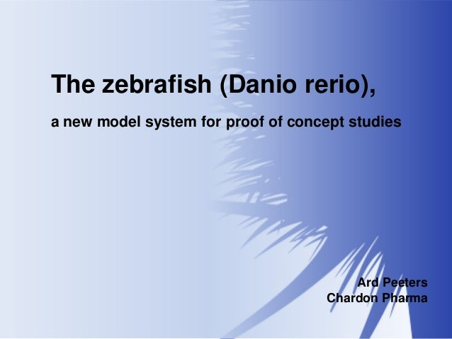 The zebrafish (Danio rerio), a new model system for proof of concept studies  Ard Peeters Chardon Pharma