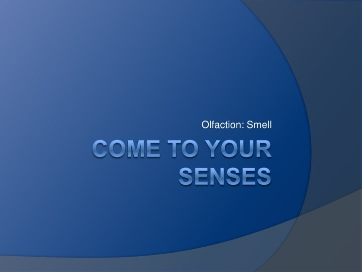 COME TO YOUR SENSES<br />Olfaction: Smell<br />