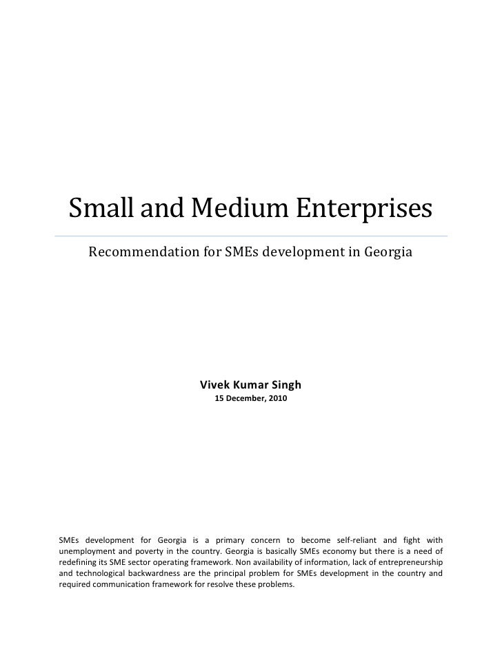 Small and Medium Enterprises        Recommendation for SMEs development in Georgia                                      Vi...