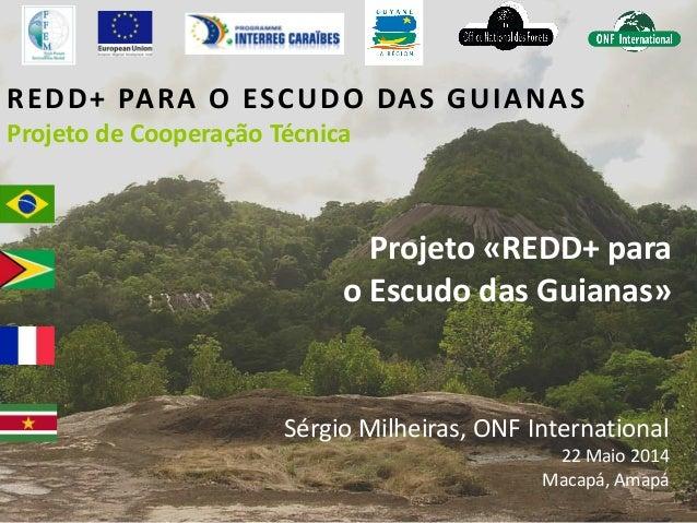 REDD+ PARA O ESCUDO DAS GUIANAS Projeto de Cooperação Técnica Projeto «REDD+ para o Escudo das Guianas» Sérgio Milheiras, ...