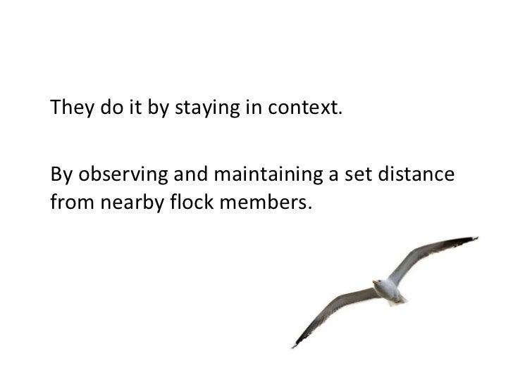 Disrupting Traditional Leadership: Flock Behavior in Communities Slide 3