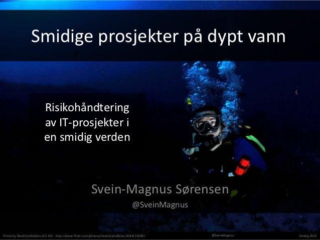 Smidige prosjekter på dypt vann                          Risikohåndtering                          av IT-prosjekter i     ...