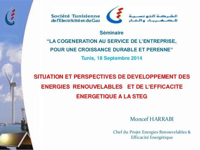"""Séminaire  """"LA COGENERATION AU SERVICE DE L'ENTREPRISE,  POUR UNE CROISSANCE DURABLE ET PERENNE""""  Tunis, 18 Septembre 2014..."""