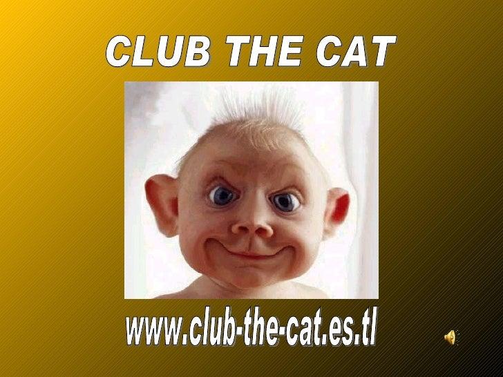 www.club-the-cat.es.tl CLUB THE CAT