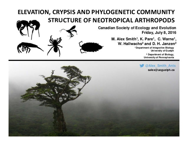 ELEVATION, CRYPSIS AND PHYLOGENETIC COMMUNITY  STRUCTURE OF NEOTROPICAL ARTHROPODS Canadian Society of Ecology and Evoluti...