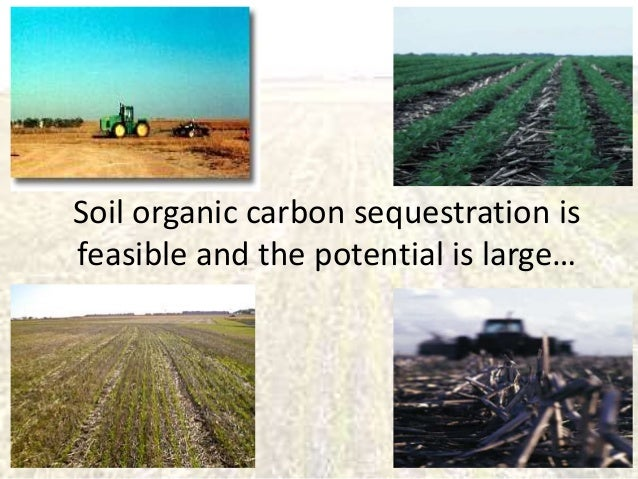 Is soil organic carbon sequestration really feasible? How to scale it up? Slide 2