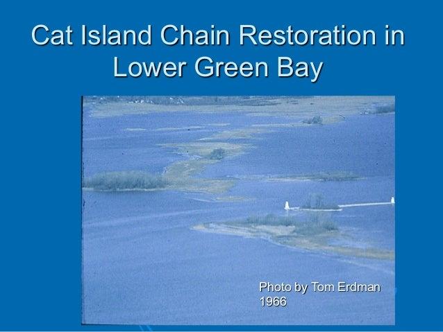 Cat Island Chain Restoration in Lower Green Bay  Photo by Tom Erdman 1966