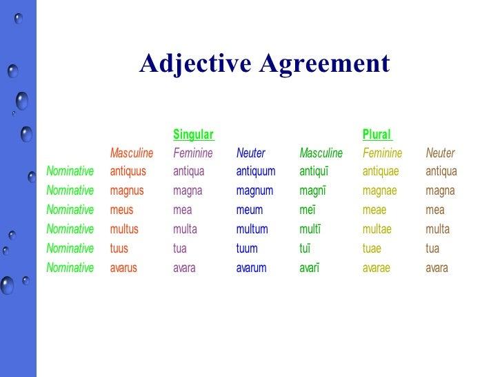 Latin Noun Adjective Agreement Gallery Agreement Letter