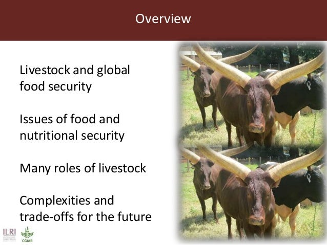 Global food and nutrition security to population stabilization: Contributions of the developing world's livestock sector Slide 2
