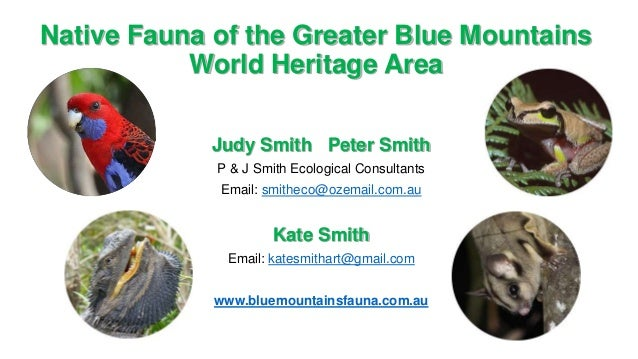Native Fauna of the Greater Blue Mountains World Heritage Area Judy Smith Peter Smith P & J Smith Ecological Consultants E...