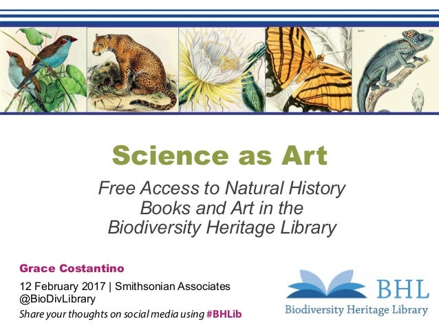 Science as Art Free Access to Natural History Books and Art in the Biodiversity Heritage Library Grace Costantino 12 Febru...