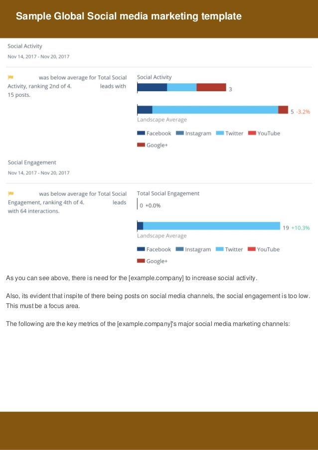 Sample Global Social Media Marketing Template 4