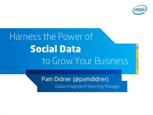 Harness the Power of        Social Data           to Grow Your Business           Pam Didner (@pamdidner)               Gl...
