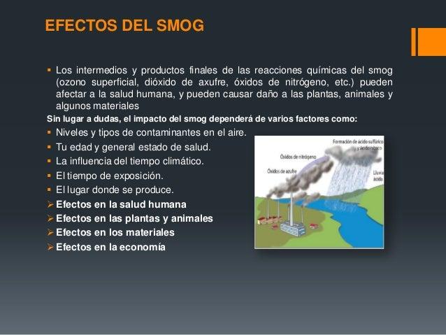 Smog fotoquimico efectos en el medio ambiente