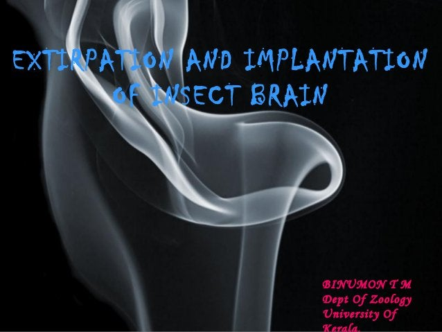 EXTIRPATION AND IMPLANTATION  Page 1  OF INSECT BRAIN  BINUMON T M  Dept Of Zoology  University Of  Kerala.